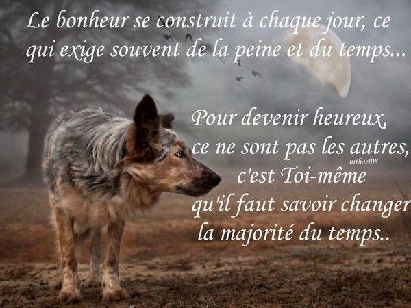 citation loup